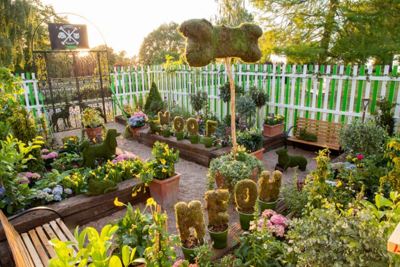 Exceptional Dogscaping Would Ensure Pet Friendly And Beautiful Garden | Online Patio  Lawn Garden Store